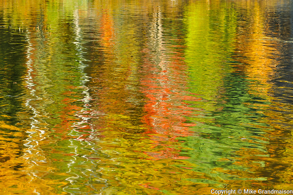 Reflection of autumn colored trees in Raven Lake<br /> DOrset<br /> Ontario<br /> Canada