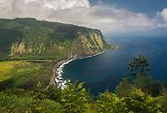 View of the steep coastal cliffs along Waipio Bay from the Waipio Valley Lookout, Hāmākua District, The Big Island of Hawai'i, Hawaii
