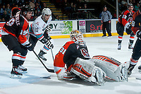 KELOWNA, CANADA - JANUARY 23: Nick Schneider #31 of Medicine Hat Tigers falls to the ice trying to defend the net against the Kelowna Rockets on January 23, 2016 at Prospera Place in Kelowna, British Columbia, Canada.  (Photo by Marissa Baecker/Shoot the Breeze)  *** Local Caption *** Nick Schneider;