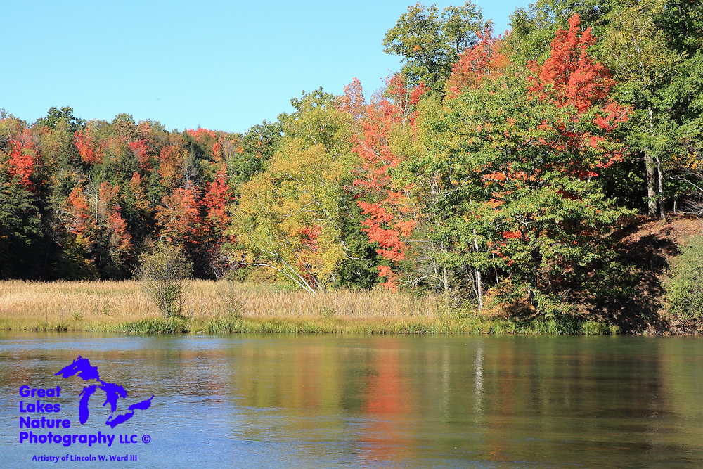 One of the truly spectacular rivers in the Midwest, the Big Manistee River remains pristine and is beautiful in the autumn.