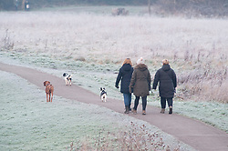 © Licensed to London News Pictures. 24/01/2019. Sidcup, UK.A freezing cold weather morning for dog walkers at Foots Cray Meadows in Sidcup, South East London . Photo credit: Grant Falvey/LNP