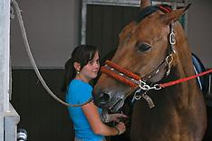 Mommen Mieke 2009