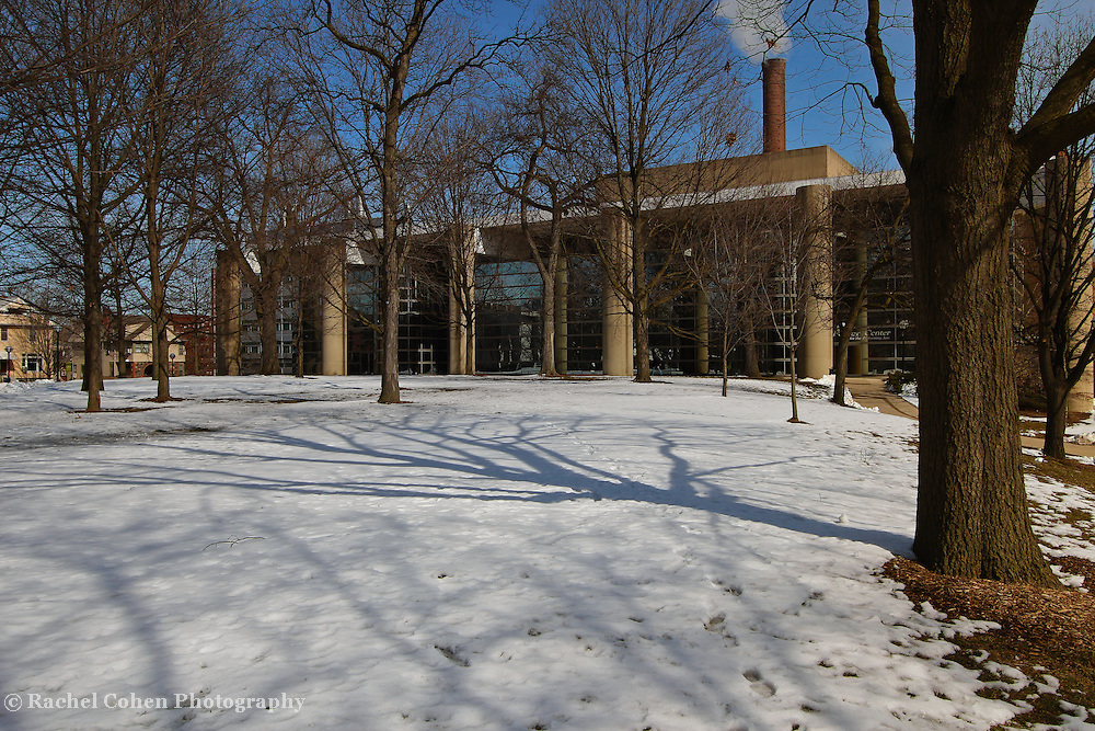 &quot;Smoke and Shadows&quot;<br />