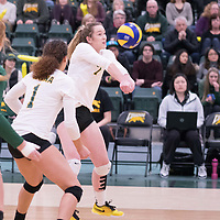 1st year outside hitter Jordin Gudmundson (7) of the Regina Cougars during the home game on January 6 at Centre for Kinesiology, Health and Sport. Credit: Arthur Ward/Arthur Images