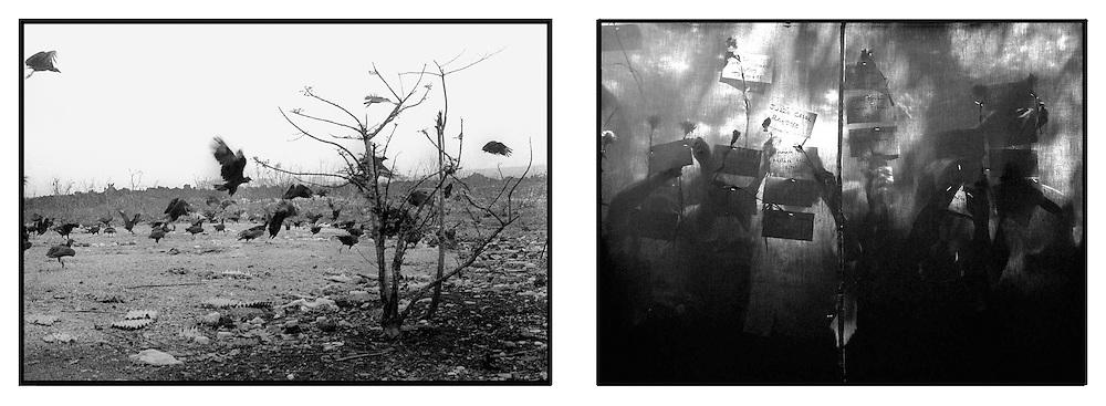 Aves de Rapiña sobre vuelan el Playón, La libertad y familiares  escriben los nombres de desaparecidos en el parque Cuscatlan Salvador, El Salvador durante una actividad conmemorativa a las víctimas de la guerra civil de El Salvador 1980-1992. . (IL Photo Edgar Romero)