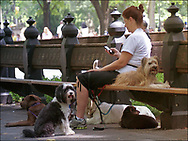 A dogwalker and her cellphone in Central Park, New YOrk City