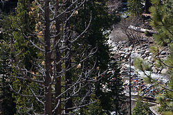 The peloton weave through the trees above Lake Tahoe at Amgen Breakaway from Heart Disease Women's Race empowered with SRAM (Tour of California) - Stage 1. A 117km road race around Lake Tahoe, USA on 11th May 2017.