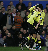 Photo: Lee Earle.<br /> Portsmouth v Manchester City. The Barclays Premiership. 10/02/2007.City's Jihal Sun (R) congratulates Bernardo Corradi after he scored their equaliser.