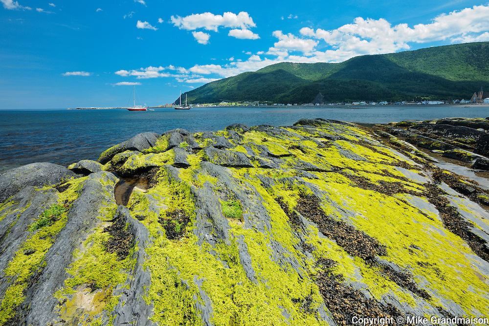 Rocky shoreline of Gulf of St. Lawrence<br /> Mont-Louis<br /> Quebec<br /> Canada