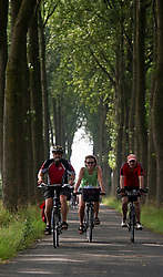 Tourists from Germany enjoy a Boat and Bike tour through Flanders. Tour members ride their bikes through the Flemish countryside between Damme and Knokke, Belgium, on Sunday, July 11, 2010. (Photo © Jock Fistick)