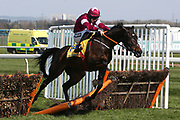 Apples Jade and Jack Kennedy crashes through the final hurdle in the3.40pm The Ryanair Stayers' (Registered as the Liverpool) Hurdle (Grade 1) during the Grand National Meeting at Aintree, Liverpool, United Kingdom on 6 April 2019.