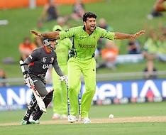 Napier-Cricket, CWC, Pakistan v United Arab Emirates