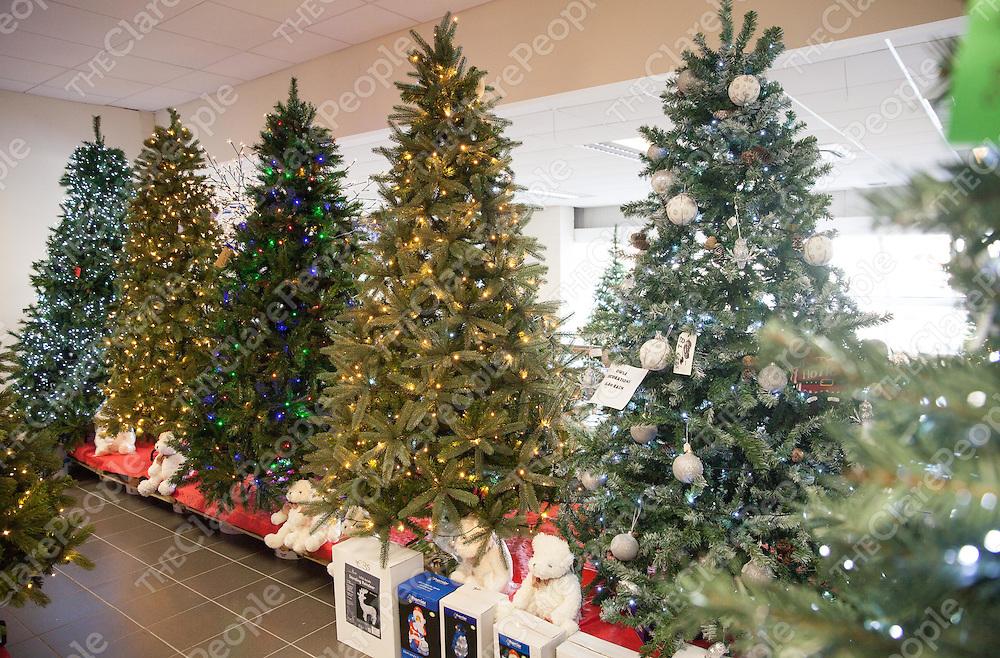 Christmas Tree Display at NC Paints