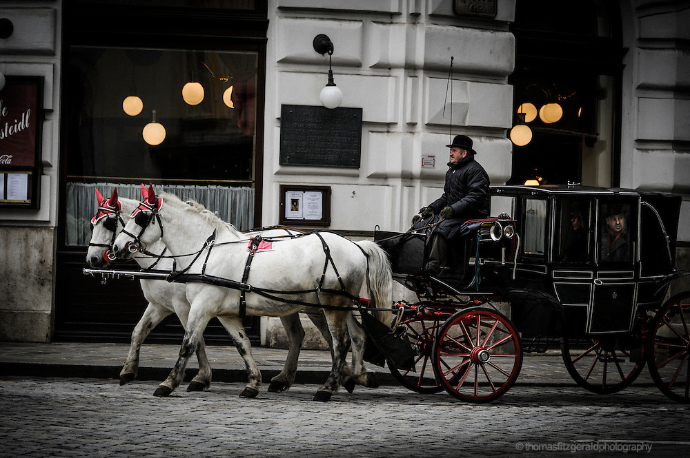Curious tourists enjoy a horse and Carriage ride in the City of Vienna, Austria.
