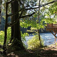Heaven's Gate River Cottages are vacation rentals located along the McKenzie River near Vida, Oregon.