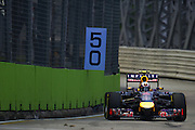 September 18-21, 2014 : Singapore Formula One Grand Prix - Daniel Ricciardo (AUS), Red Bull-Renault