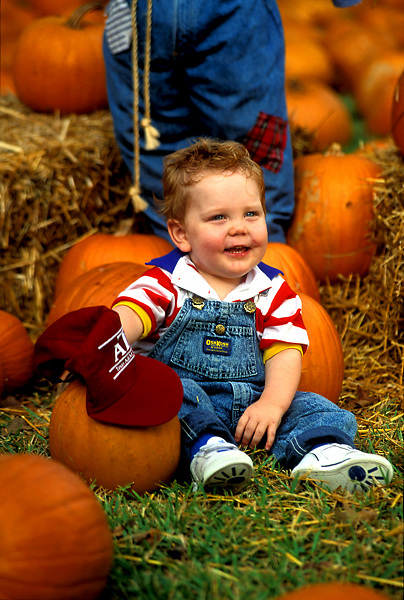 Stock photo of a young Boy Sitting in Pumpkin Patch Holding Texas A&M Hat