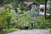 PEPCO employees assess damage in the aftermath of Hurricane Irene in Takoma Park, Maryland on August 28, 2011. The Category 1 storm left half a million people without power in the D.C. area.  UPI/Kevin Dietsch