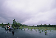 Okefenokee National Wildlife Refuge, Georgia