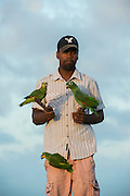 Parrot seller<br /> Georgetown<br /> GUYANA<br /> South America<br /> 31 years selling coconuts