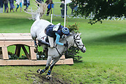 My Man Mickie ridden by Michelle Williamson who is unseated in the Equi-Trek CCI-L4* Cross Country during the Bramham International Horse Trials 2019 at Bramham Park, Bramham, United Kingdom on 8 June 2019.