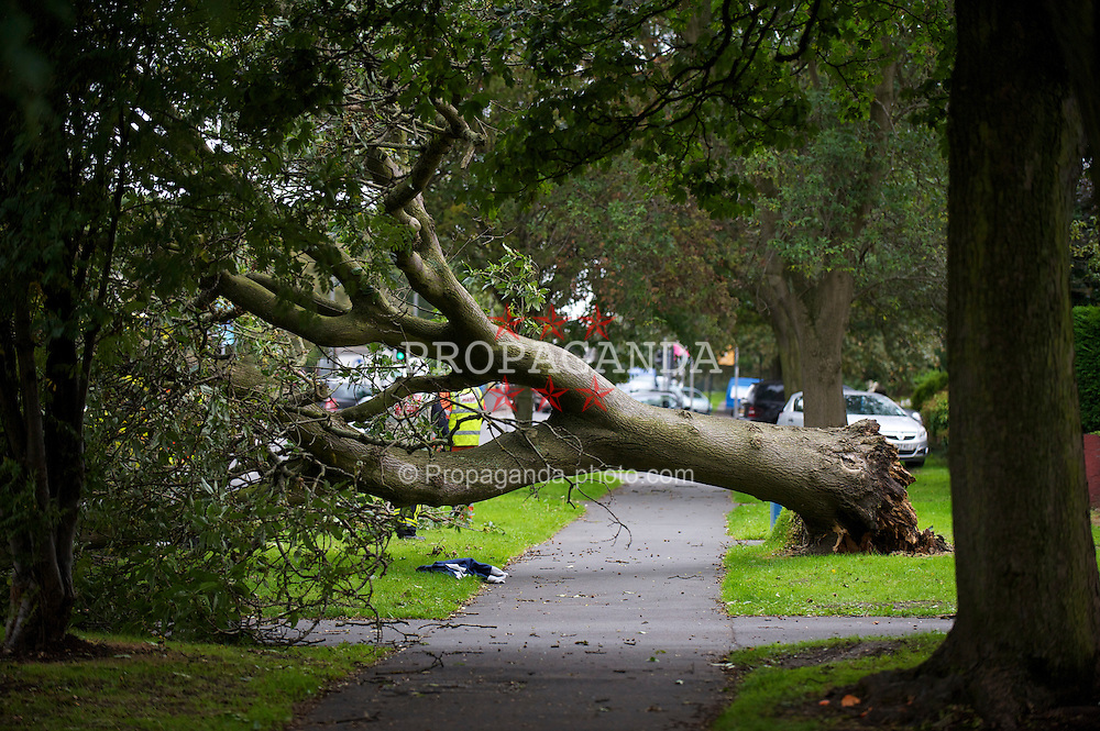 LIVERPOOL, ENGLAND - Wednesday, September 15, 2010: The scene on Queens Drive in Liverpool after a large tree was blown over during heavy gusts of wind, falling on top of a white van trapping the driver inside. Fire brigade crew on the scene attempting to cut him free. (Photo by David Rawcliffe/Propaganda)