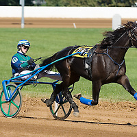 Harness Racing 2006 - Gallery 01