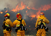June 20, 2016 - Duarte, California, U.S. -Upland firefighters, from left, NIMA HOMAYOUNIEH, JOSEPH ARMENDARIZ, and CAPT. JOE BURNA, watch as flames burn toward Highway 94 near Potrero on Monday. <br /> ©Exclusivepix Media