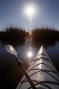 Sea Kayaking  (MR 686) Hilton Head South Carolina