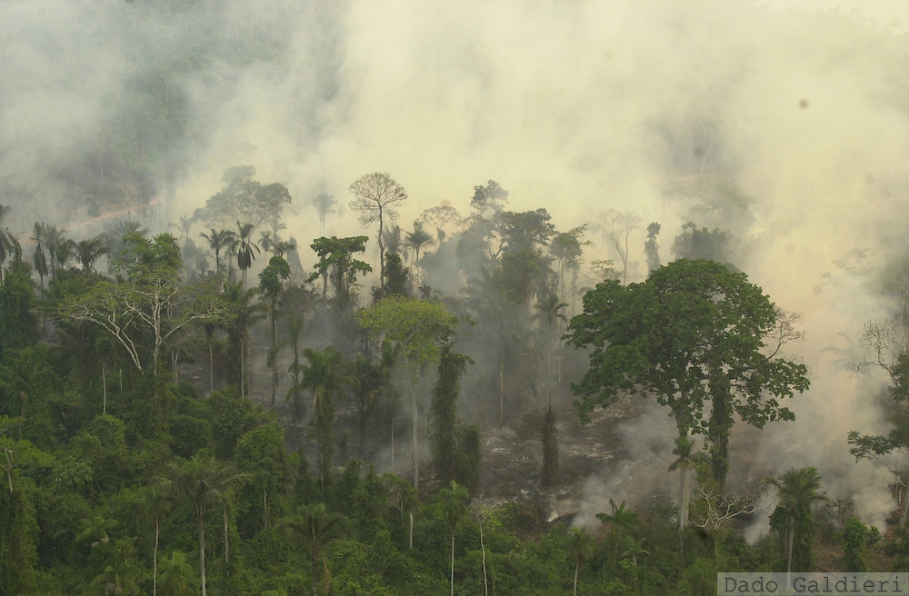 Smoke billows from the Amazon rainforest near the city of Sao Felix do Xingu, in the northern Brazilian state of Para. Ranchers, soybean farmers and loggers burned and cut down a near-record area of the Amazon