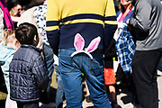 A pair of Easter Bunny is seen in the pocket of an adult during the 21st Annual Easter Egg Hunt at Winnequah Park in Monona, WI on Saturday, April 20, 2019.