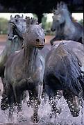 Los Colinas Mustang Canyon statue in Dallas Texas