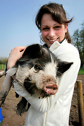 UK ENGLAND WILTSHIRE CHITTERNE 15APR07 - Sheila Behjat (24) holds a Kune Kune piglet at the Paradise Pig Farm run by Tony York and Carron McCann. Under the 'Pig Perfect' banner the two run a joint farm specialising in rare breeds and offer courses on pig keeping...jre/Photo by Jiri Rezac..© Jiri Rezac 2007..Contact: +44 (0) 7050 110 417.Mobile:  +44 (0) 7801 337 683.Office:  +44 (0) 20 8968 9635..Email:   jiri@jirirezac.com.Web:    www.jirirezac.com..© All images Jiri Rezac 2007 - All rights reserved.