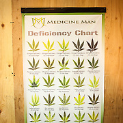 An informational poster at Medicine Man in Denver.