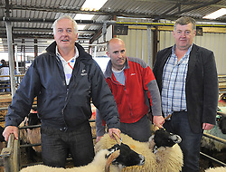 Mayo Blackface Sheep breeders Group sale 1st place Blackface Hoggets   Joe McEvilly Killawalia centre with Jimmy O'Dwyer and Pat Deane (Show Judges). Pic Conor McKeown
