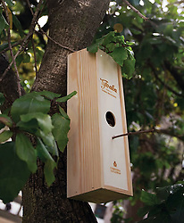 "July 13, 2017 - Portugal - Ecology-conscious wine lovers can help local wildlife – by turning the packaging of their favourite tipple into to a bird box.The wine comes with a label featuring a barn owl.It is packed in a wooden bow which features a hole where the bird on the label is seen peeking out from.When the wine has been drunk, the box slid slides back on and it can he hung on a tree and used as a bird box.There is even a twig sticking out for the wild birds to perch on.Portuguese wine maker Companhia das Lezírias commissioned the Rita Rivotti Design Studio to create an innovative box.A spokesman said the label is very aware of environmental issues.Its own environmental projects included encouraging the return of barn owls to its vineyards where the birds keep down the local rodent population in check.The species has the scientific name is Tyto alba.Inspired by the connection between vineyards and the barn owl, the designer firm came up with the name Tyto Alba wine and the bird box packaging.A spokesman for the design studio said:"" The owls are featured and portrayed in a special design that makes them come to life, reminding you of a watchful personality, conveying quality, and reliability.""The packaging of the bottle represents respect for nature and protection of a species, increasing consciousness of the importance to become more than just wine lovers.""Once you open the box, you can use the packaging as a bird house."" # UNE BOITE DE VIN DEVIENT UN NICHOIR A OISEAUX (Credit Image: © Visual via ZUMA Press)"