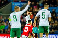 Fotball , 8 Oktober , VM Kvalifisering , FIFA World Cup European qualifiers , Landslaget , Norge - Nord-Irland , Norway - Northern Ireland , Stuart Dallas<br /> <br />  , Foto: Marius Simensen, Digitalsport