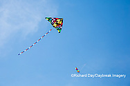 63495-02702 Kites flying at Flagler Beach Flagler Beach, FL