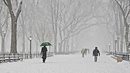 The Mall in Central Park during a snow storm