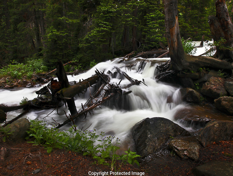 Upper Fall River in Rocky Mountain Nat Park
