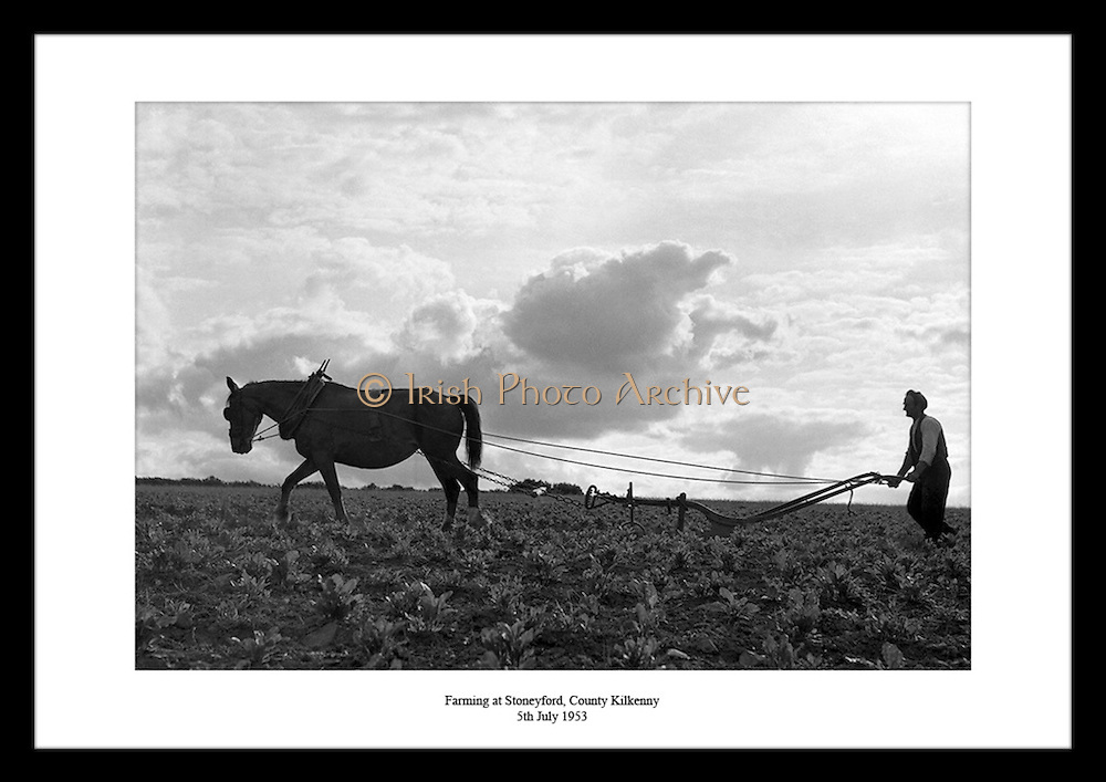 Discover the beauty of Irelands landscape at our Irish Photo Archive. Decorate your walls with classic Irish photos  of your favorite things from irish histroy in the last sixity years: sports, history, fashion or celebrities. Irish Photo Archive meets the needs of your dad, whether you are looking for a birthday gift, a Father's Day gift, a Christmas gift, or a gift for any other occasion.