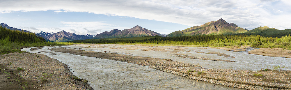 Composite panorama of Teklanika River in Denali National Park in Southcentral Alaska. Summer. Morning.
