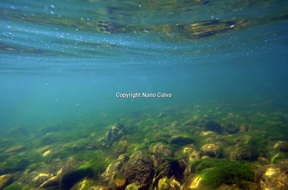 Underwater view of Sella River, Asturias, Spain