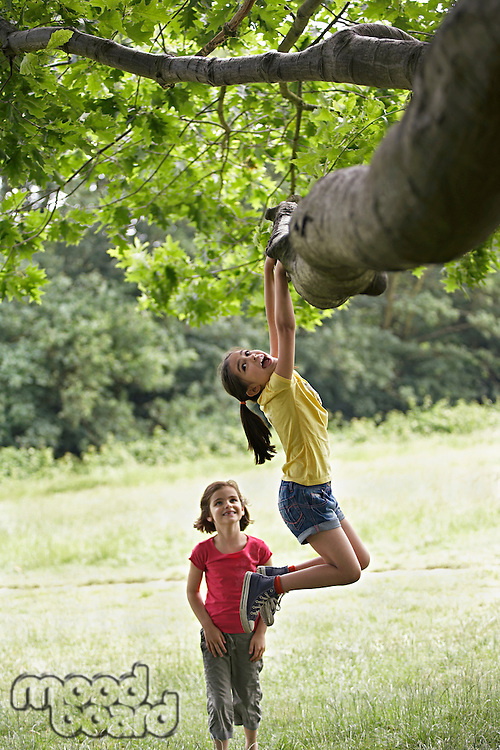 Girl watching friend (7-9) hanging from tree