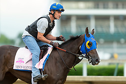 Oaks 142 hopeful Venus Valentine was on the track for training, Wednesday, May 04, 2016 at Churchill Downs in Louisville.