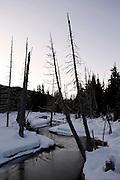 Whistler National Park, British Columbia