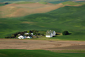 Barns in the Palouse