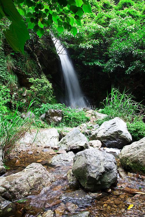 Huangliangshan scenic spot in Zhejiang contains a series of beautiful waterfalls amongst verdant forest.