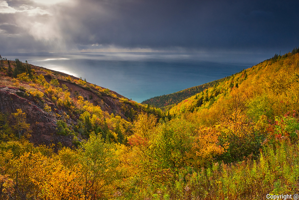 Acadian forest in autumn foliage along the Cabot Strait at Cape Smokey <br />