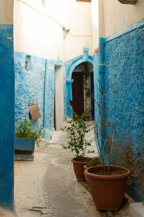 RABAT, MOROCCO - 27th May 2014 - Small street with painted blue walls and decorative plant pots at the Kasbah of the Udayas, Rabat Medina, Morocco.